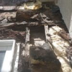 Is Mold Remediation Covered by Homeowners Insurance?