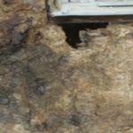 stucco restoration