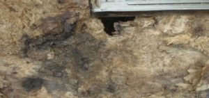stucco-maintenance